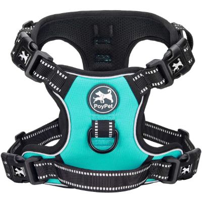 1. PoyPet 2019 Upgraded No Pull Reflective Dog Harness